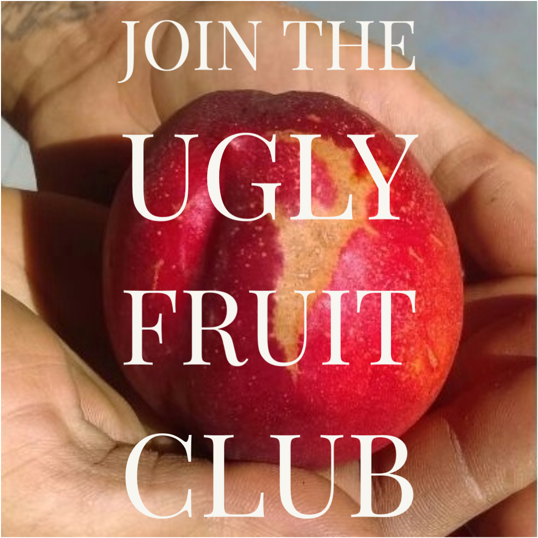 Ugly Fruit Club